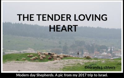 THE TENDER LOVING HEART